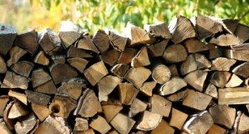 Zarząd Dróg Powiatowych zachęca do zakupu drewna